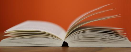 Buchtipp: Stichwörter zur Kulturpsychologie