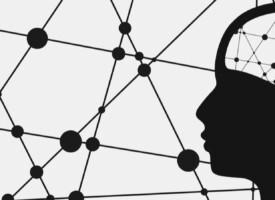 Psychologie | Zur Reform der Psychotherapieausbildung in Deutschland